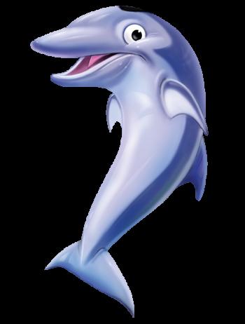 Day4_Dolphin_LR